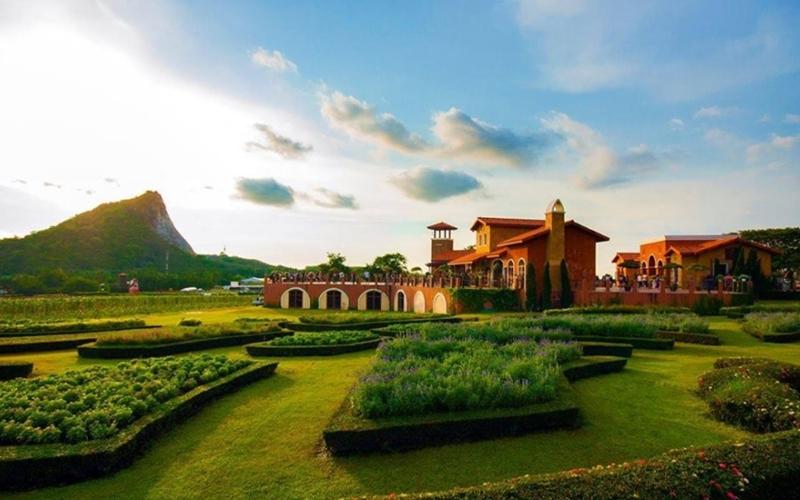 Levana Hotel Pattaya : Silverlake Vineyards